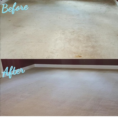 Carpet Cleaners Mobile Al Carpet Cleaning Company Nurse S